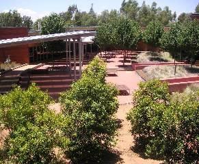CSU Dubbo courtyard
