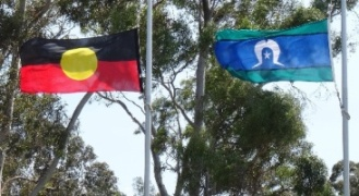 ATSI flags