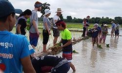 EWB Cambodia 250x150