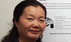 Lihong Zheng