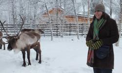 CSU student Ms Annette Jacobsen meeting reindeer in Sweden