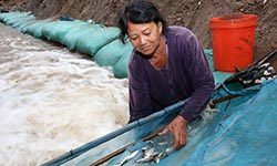Lao fisher clears fishway