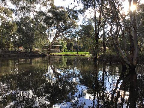 Professor Watson and Dr Watson's property in South Australia